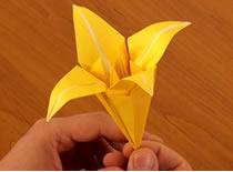 Jak zrobić tradycyjną lilię z papieru