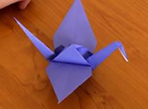 Jak złożyć żurawia z papieru