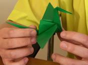 Jak rozpocząc przygodę z origami - odmiany
