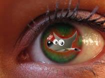 Jak modyfikować oczy w programie Gimp