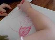 Jak narysować surykatkę