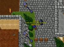Jak zacząć przygodę grą Tibia - Quest na Doublet