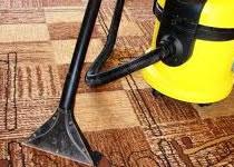 Jak usunąć kocią sierść z dywanu