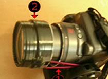 Jak z bliska robić wysokiej jakości zdjęcia
