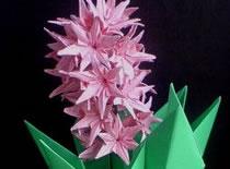 Jak zrobić kwiatka z papieru - hiacynt