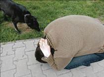 Jak się bronić przed atakiem psa