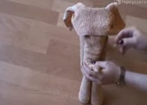 Jak zrobić słonika z ręczników