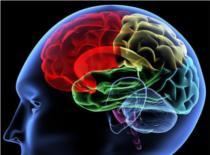 Jak poznać swoje IQ