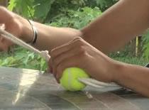 Jak zrobić zabawki dla psa z piłek tenisowych
