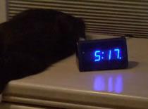 Jak przerobić budzik na mega głośny alarm
