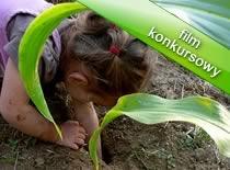Jak wypłoszyć kreta z ogrodu