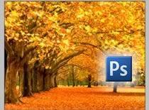 Jak zmieniać pory roku na zdjęciach