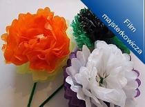 Jak zrobić kwiatka z bibuły