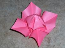 Jak zrobić jaśmin origami