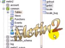 Jak połączyć się z bazą danych i dać gm'a na serwerze Metin2