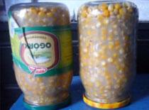 """Jak ugotować kukurydzę na tzw. """"Koński Ząb"""""""