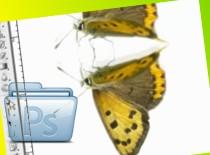 Jak zrobić odbicie lustrzane w Photoshop CS3 #1