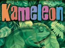 Jak grać w kolorową grę karcianą Kameleon