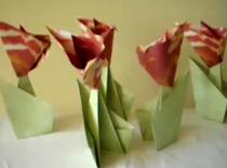 Jak zrobić tulipana z łodygą w prosty sposób
