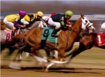 Jak wygrywać na wyścigach konnych