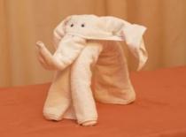 Jak ułożyć z ręczników słonia