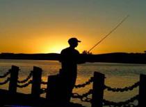 Jak łowić w nocy - nocne wędkowanie wg eksperta