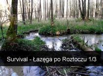 Jak zacząć uprawiać survival - Łazęga po Roztoczu cz.1/3