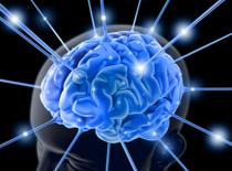 Jak synchronizować swoje półkule mózgowe