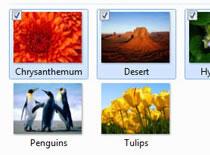 Jak włączyć wygodne zaznaczanie plików i folderów w Windows 7