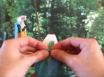 Jak złożyć ptaka z papieru - Papuga