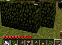 Jak zrobić żywopłot w Minecraft