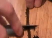 Jak obrać wanilię i zrobić cukier waniliowy