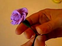 Jak zawinąć bibułę w kwiat