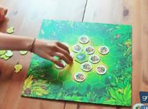 Jak grać w szaloną grę dla dzieci i rodzin Szalone Małpy (+konkurs)