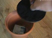Jak zrobić skrytkę w doniczce
