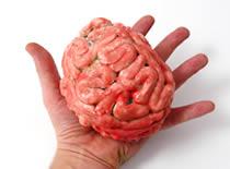 Jak zrobić sztuczny mózg na Halloween