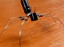 Jak zrobić komputerowe robaki