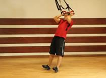 Jak ćwiczyć mięśnie bicepsa - uginanie ramion z TRX