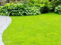 Jak przygotować ogród do założenia trawnika