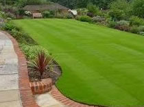 Jak przygotować ogród do założenia trawnika #3