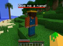 Jak dodać towarzysza w grze Minecraft