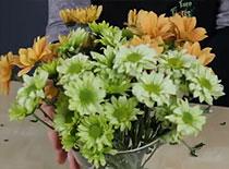 Jak przygotować kwiaty do układania w wazonie