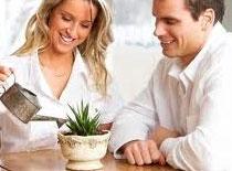 Jak umyć liście roślin domowych