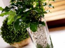 Jak zrobić wazonik z roślinnym motywem