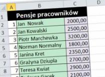 Jak pracować w Excel 2010 - szerokość kolumny a liczba