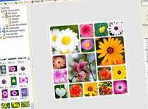 Jak korzystać z PhotoScape - tworzenie animacji GIF