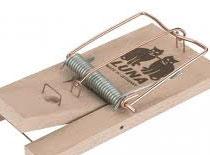 Jak zrobić podstawkę pod telefon z pułapki na myszy