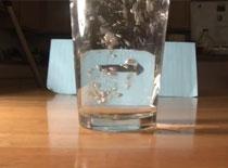Jak wykonać iluzję optyczną ze szklanką wody