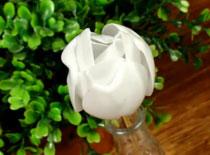 Jak zrobić plastikowego tulipana