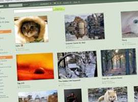 Jak szukać darmowych zdjęć stockowych